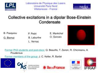 Collective excitations in a dipolar Bose-Einstein Condensate