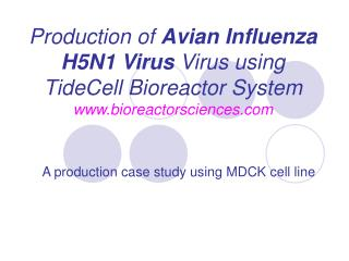A production case study using MDCK cell line