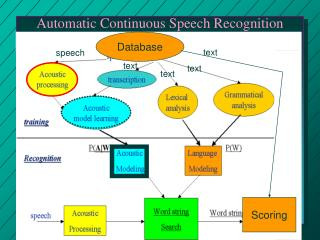 Automatic Continuous Speech Recognition