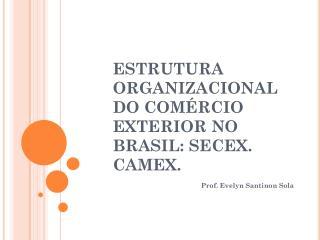 ESTRUTURA ORGANIZACIONAL DO COMÉRCIO EXTERIOR NO BRASIL: SECEX. CAMEX.
