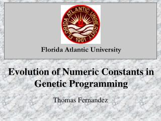 Evolution of Numeric Constants in Genetic Programming