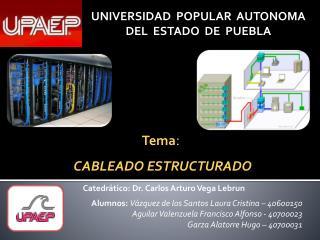 Catedrático: Dr. Carlos Arturo Vega  Lebrun