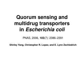 Quorum sensing and multidrug transporters in  Escherichia coli