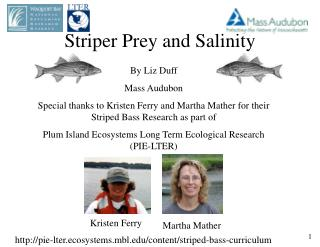Striper Prey and Salinity