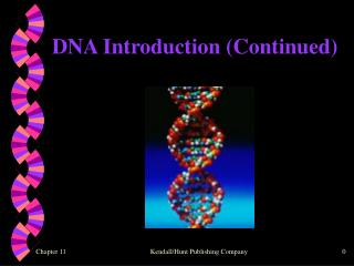 DNA Introduction (Continued)