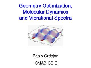 Geometry Optimization,  Molecular Dynamics  and Vibrational Spectra