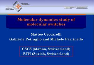 Molecular dynamics study of molecular switches