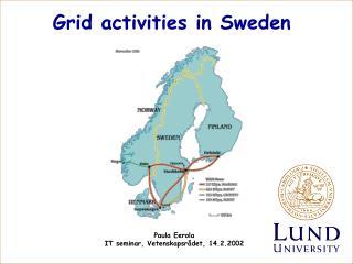Grid activities in Sweden