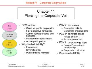 Chapter 11 Piercing the Corporate Veil