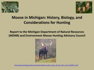 michigan/documents/dnr/Moose_white_paper_28_Feb_2011_Final_350494_7.pdf