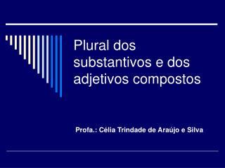 Plural dos substantivos e dos adjetivos compostos