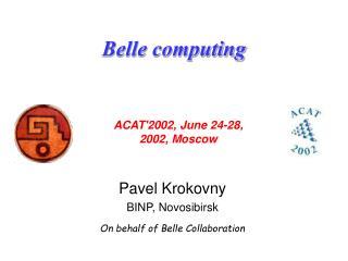 Belle computing