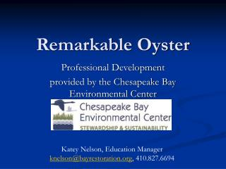 Remarkable Oyster