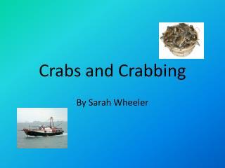 Crabs and Crabbing