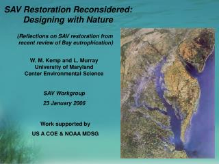 SAV Restoration Reconsidered:  Designing with Nature