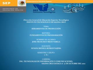 Dirección General de Educación Superior Tecnológica INSTITUTO TECNOLÓGICO DE SALINA CRUZ TEMA: