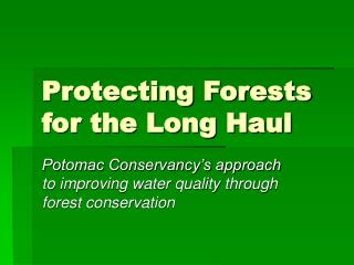 Protecting Forests for the Long Haul