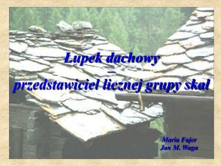 Łupek dachowy  –  przedstawiciel licznej grupy skał