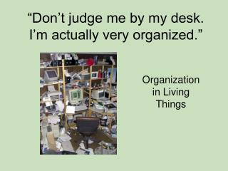"""Don't judge me by my desk. I'm actually very organized."""