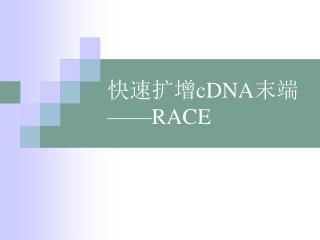 快速扩增 cDNA 末端 ——RACE