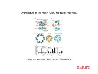 F Wang  et al. Nature 000 ,  1 - 5  (2011) doi:10.1038/nature09780