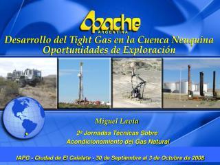 Miguel Lavia 2ª Jornadas Técnicas Sobre  Acondicionamiento del Gas Natural