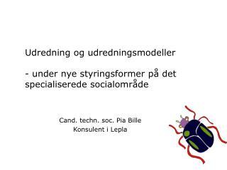 Udredning og udredningsmodeller - under nye styringsformer på det specialiserede socialområde