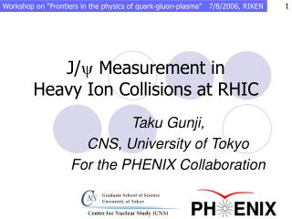 J/ y  Measurement in  Heavy Ion Collisions at RHIC