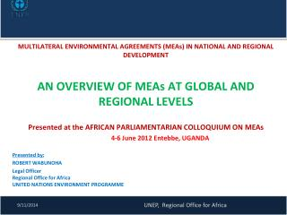 MULTILATERAL ENVIRONMENTAL AGREEMENTS  (MEAs) IN  NATIONAL AND REGIONAL  DEVELOPMENT