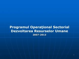 Programul Opera?ional Sectorial  Dezvoltarea Resurselor Umane 2007-2013