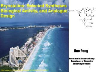 Bryostatins: Selected Syntheses Biological Activity, and Analogue Design
