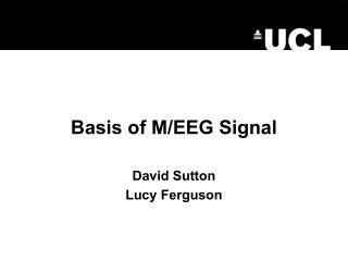 Basis of M/EEG Signal