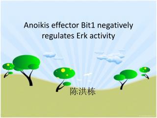 Anoikis effector Bit1 negatively regulates Erk activity