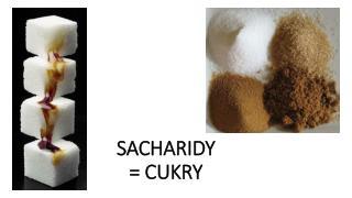 SACHARIDY = CUKRY