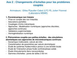 Axe 2 : Changements d'échelles pour les problèmes couplés