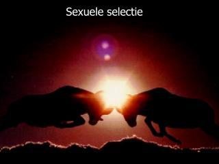 Sexuele selectie