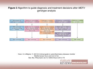 Figure 3  Algorithm to guide diagnosis and treatment decisions after  MEFV  genotype analysis