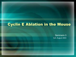 Cyclin E Ablation in the Mouse