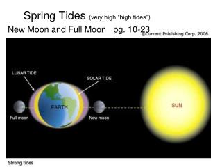 "Spring Tides  (very high ""high tides"") New Moon and Full Moon   pg. 10-23"