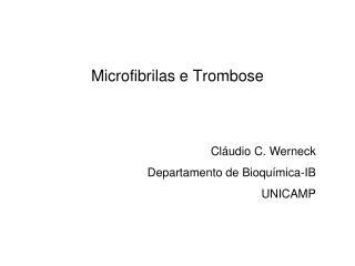 Microfibrilas e  Trombose