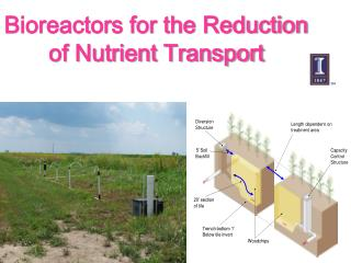 Bioreactors for the Reduction of Nutrient Transport