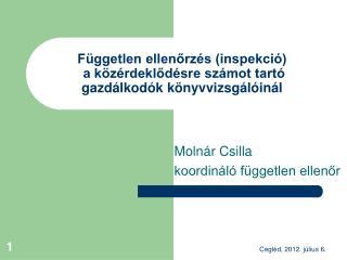 Független ellenőrzés (inspekció)  a közérdeklődésre számot tartó gazdálkodók könyvvizsgálóinál