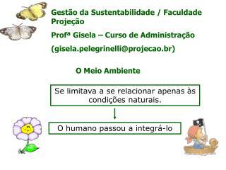 Gestão da Sustentabilidade / Faculdade Projeção Profª Gisela – Curso de Administração