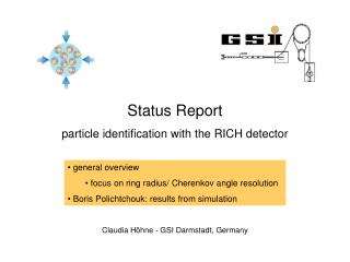 Status Report particle identification with the RICH detector