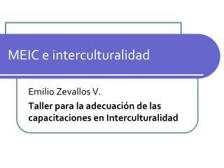 MEIC e interculturalidad