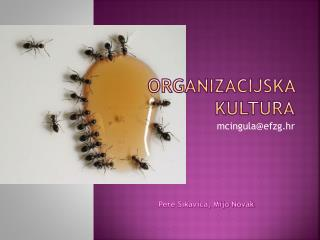 Organizacijska kultura