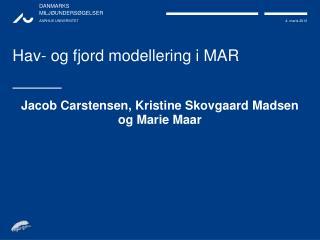 Hav- og fjord modellering i MAR
