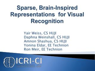 Sparse, Brain-Inspired Representations  for Visual Recognition