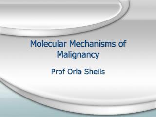 Molecular Mechanisms of Malignancy