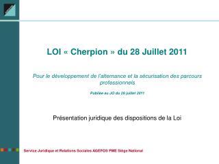LOI   Cherpion   du 28 Juillet 2011  Pour le d veloppement de l alternance et la s curisation des parcours professionnel